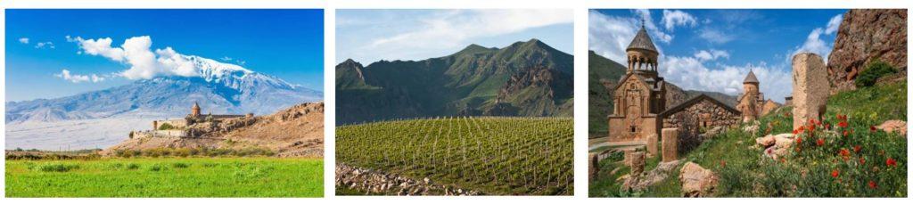 wine tour to Armenia